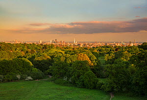 View of the City of London taken from a (MEWP) Mobile Elevated Working Platform, Hampstead Heath, London, England, UK, May 2015. - Matthew Maran