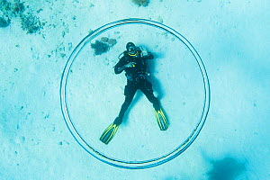 Dive instructor Ahmed Gomaa blows bubble rings whilst scuba diving at dolphin house reef, northern Red Sea, February 2016  -  Bertie Gregory