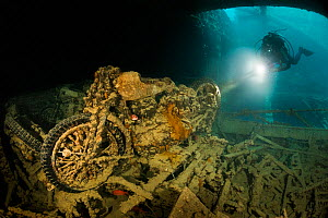 Diver investigates a second world war motorbike with his torch in the cargo hold of the SS Thistlegorm, northern Red Sea, February. - Bertie Gregory