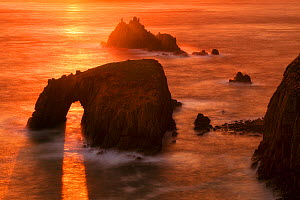 Coastline with rock arch at Land's End towards Enys Dodnan and Armoured Knight, Cornwall, England, UK. April 2009.  -  Guy Edwardes