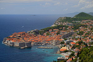 View of Dubrovnik old town and ancient city walls, Croatia, July 2014. - Nick Upton