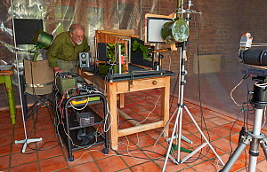 Photographer Stephen Dalton with his  indoor studio set up for insect flight photography of Speckled Wood butterfly (Parage aegeria) September 2015  -  Stephen  Dalton