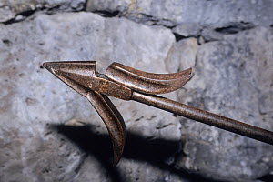 Harpoon head in whaling museum, Azores Island, Portugal  -  Doc White
