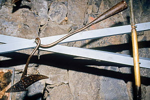 Harpoon head, bent after killing a whale in whaling museum, Azores Islands, Portugal.  -  Doc White