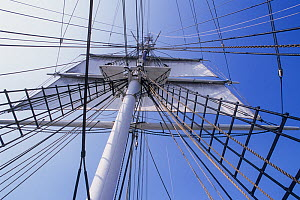 View into rigging aboard the Charles W Morgan, 1841, the oldest commercial sailing vessel afloat. Mystic Seaport, Connecticut, USA.  -  Doc White
