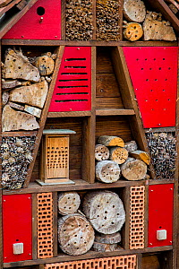 Insect shelter, France.  -  Klein & Hubert