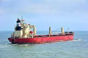 Cargo ship in the North Sea, Europe. June 2010.  -  Philippe Clement