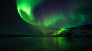 Timelapse of the Aurora Borealis, Hornstrandir, West Fjords, Iceland. April 2016 - Terry  Whittaker