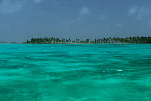 Landscape of the Caribbean Ocean near Ambergris Caye,  Belize, Central America.  -  Pete Oxford