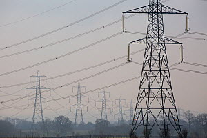 High voltage power lines and pylons in the countryside, Gloucestershire, UK.  March 2015. - Nick Turner