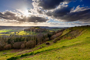 Downham Hill from iron age hill fort at Uley Bury Cotswold escarpment, Gloucestershire, England, UK.  March 2015.  -  Nick Turner