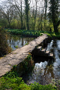 Stone clapper bridge over River Leach at Eastleach Turville, Gloucestershire, UK. April 2015.  -  Nick Turner