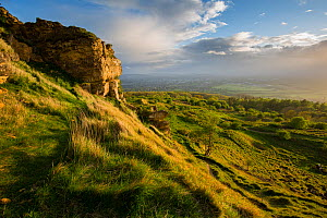 Limestone outcrop and countryside at Cleeve Hill on the Cotswold Edge, Gloucestershire, UK. May 2015.  -  Nick Turner