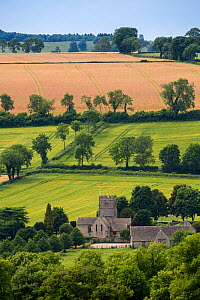 Village church at Guiting Power and surrounding countryside, Gloucestershire, UK. July 2015.  -  Nick Turner