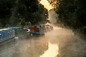 Barges in autumn mist on Kennet and Avon Canal, Bath, UK. September 2015. - Nick Turner