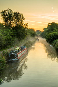 Autumn mist on Kennet and Avon Canal, Bath, UK. September 2015. - Nick Turner