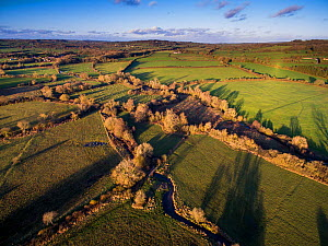 River Eye flowing through water meadows, Greystones Farm Nature Reserve, Site of Special Scientific Interest (SSSI), Gloucestershire Wildlife Trust.  Aerial drone with CAA permit. November 2015.  -  Nick Turner