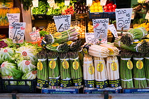 Green and white Asparagus for sale in Rialto Market, Venice, Italy, April.  -  Gary  K. Smith