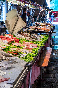 Fresh seafood for sale at Rialto market, Venice, Italy, April. - Gary  K. Smith