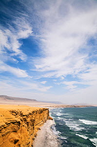 Paracas Beach, Paracas National Reserve, Ica Region, Peru. November 2013.  -  Merryn  Thomas