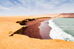 Playa de Roja (red beach), Paracas National Reserve, Ica Region, Peru. November 2013.  -  Merryn  Thomas