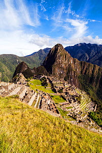 Morning at Machu Picchu, Cusco Region, Urubamba Province, Peru. December 2013.  -  Merryn  Thomas