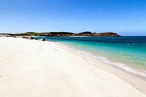 White sand beach with view to Old Grimsby, Tresco, Isles of Scilly, England. May 2013. - Merryn  Thomas