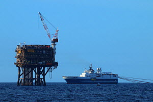 Seismic survey vessel 'Western trident' carrying out survey at the Forties Field , September 2015  -  Philip  Stephen