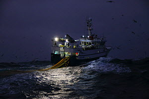 Fishing vessel 'Ocean Harvest' shooting her trawl net at night, North Sea, February 2016.  Property released. - Philip  Stephen