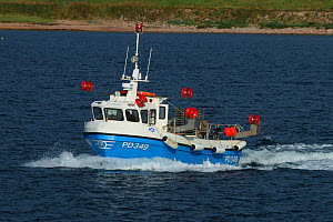 Crab fishing boat onward sailing from Peterhead Harbour, Scotland, UK. August 2015. - Philip  Stephen