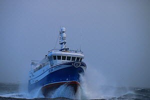 Fishing vessel 'Ocean Harvest' fishing on the suduroy bank,faroe islands.april 2015. Property released.  -  Philip  Stephen