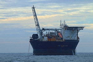 Floating production storage and offloading (FPSO) ship 'Sevan Hummingbird', situated near oil rig to store extracted oil, North Sea, September.  -  Philip  Stephen
