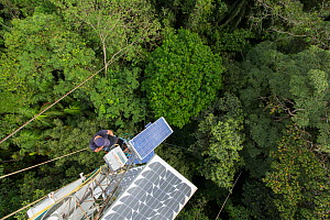 A high 48m tower used to collected data about the CO2 and O2 levels. Tropical rainforest, Barro Colorado Island, Gatun Lake, Panama Canal, Panama. - Cyril Ruoso