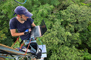 Man with laptop computer on  48m high  tower used to collect data about the CO2 and O2 levels. Tropical rainforest, Barro Colorado Island, Gatun Lake, Panama Canal, Panama. November 2012.  -  Cyril Ruoso