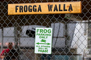 Humorous sign in Cedar Creek Corrections Center 'Frog parking only - all others will be toad'. Prisoners in this facility are raising endangered  Oregon spotted frog (Rana pretiosa) for release in the...  -  Cyril Ruoso