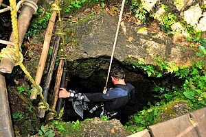 A diver prepares to go down with a pulley to a 20metre deep cenote where the Mayas who were practicing human sacrifices to their gods were throwing the dead bodies, Punta Laguna Cenote, Yucatan Penins... - Pascal Kobeh