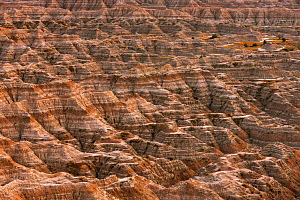 Eroded landscape, Sandstone striations and erosional features, Badlands National Park, South Dakota, USA September 2014.  -  Ingo Arndt