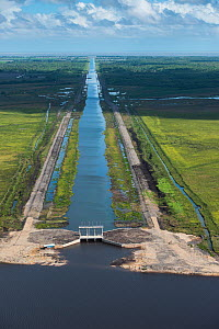 Hope canal, an irrigation canal in East Demerara Water Conservancy (for sugar cane and rice production) coastal area of Guyana, South America  -  Pete Oxford