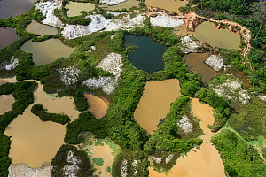Aerial view of illegal gold mining in Arimu, Guyana, South America - Pete Oxford