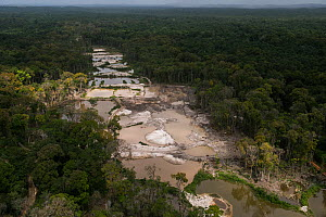 Aerial view of gold mining in Arimu, Guyana, South America - Pete Oxford