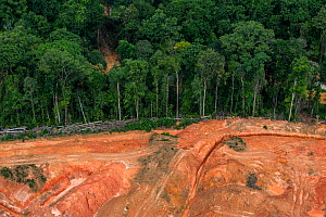 Aerial view of gold mining on edge of tropical rainforest, Arimu, Guyana, South America - Pete Oxford
