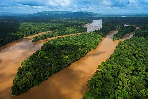 Aerial view of Cuyuni river, Guyana, South America  -  Pete Oxford
