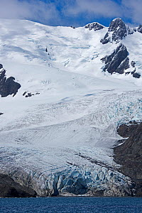 RF - Schrader Glacier in Wilson Harbour, South Georgia. January 2015. (This image may be licensed either as rights managed or royalty free.)  -  David Tipling