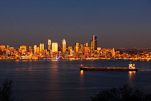 Seattle sklyine from Hamilton Viewpoint Park in West Seattle, Washington, USA. January 2016. - Kirkendall-Spring