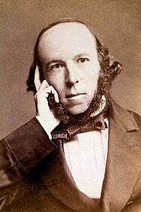 Sepia photograph of Herbert Spencer (1820-1903), English philosopher, 1860s. Spencer was a journalist who published his best known work Principals of Psychology in which he applied Darwin's ideas on e...  -  Paul  D Stewart