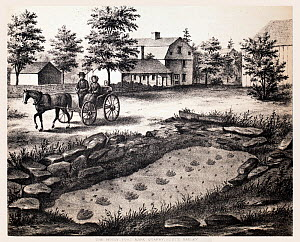 Lithograph of the Moody Footmark Quarry in South Hadley, where Pliny Moody discovered the very first fossil tracks in 1802.  From Hitchcock, Edward. Ichnology of New England. A Report on the Sandstone...  -  Paul  D Stewart