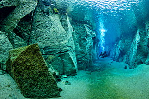 Scuba diver exploring volcanic crack Nesgja, in Asbyrgi National Park, northern Iceland - Franco  Banfi