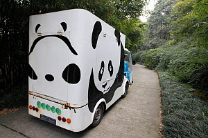 Panda decorated vehicle in the Chengdu Panda Breeding Center, Sichuan, China, January.  -  Cyril Ruoso