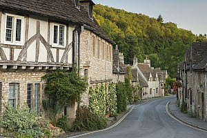 Half-timbered cottages in Cotswolds village of Castle Combe, Wiltshire, England, UK. September 2012. - Adam Burton