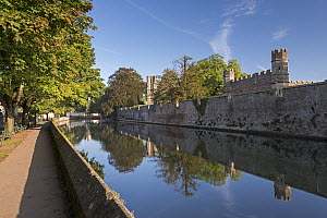 Bishop's Palace and moat in the cathedral city of Wells, Somerset, England. September 2013. - Adam Burton